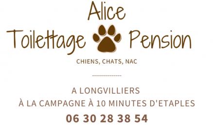 Alice Toilettage et Pension
