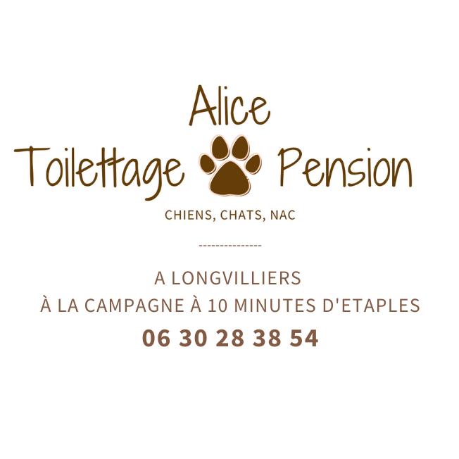 alice-toilettage-et-pension-longvilliers