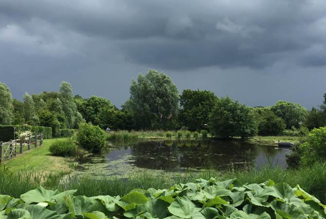 pre-rainette-sorrus-10